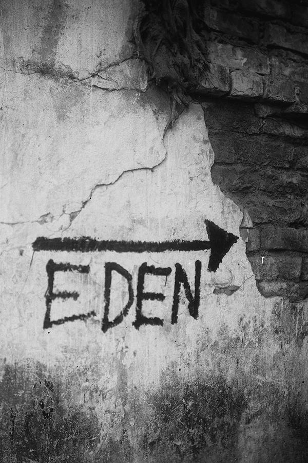 2020_EDEN_SGupta_0007