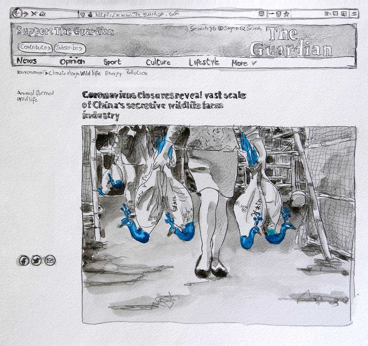 Isabella Pers_SIC TRANSIT GLORIA MUNDI The Guardian March 2020_grafite e acquarello su carta cotone_2020_IG